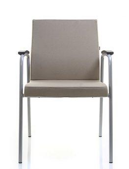 VECTOR Meeting Chair